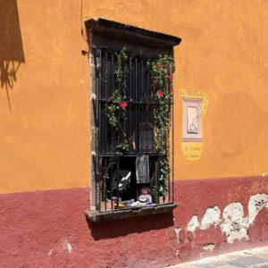 Solamente en San Miguel is available at La Ventana